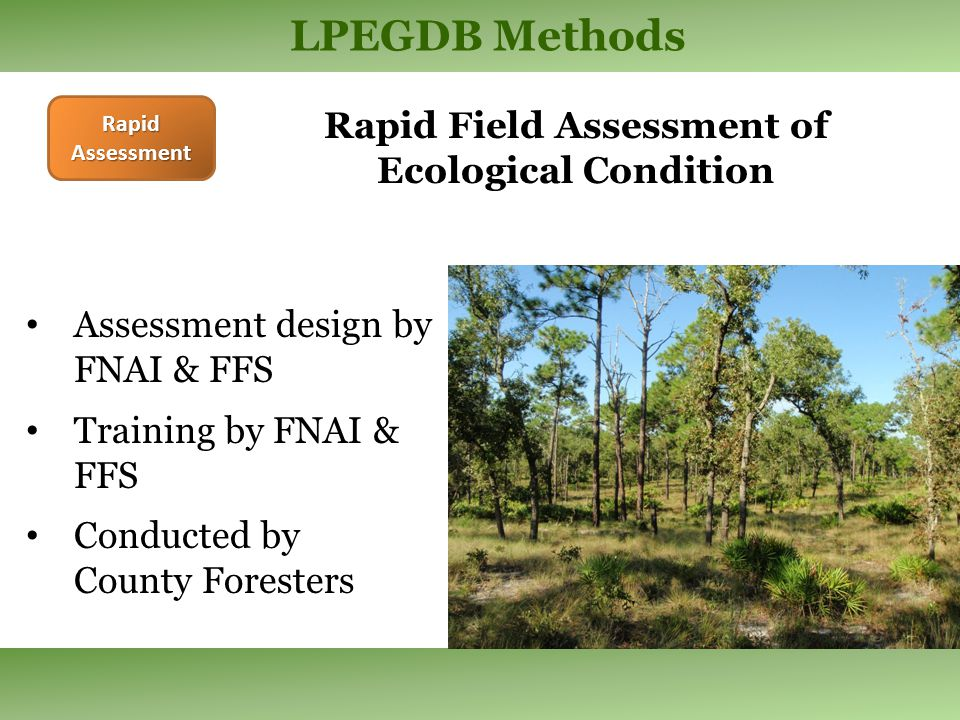 LPEGDB Methods Rapid Assessment Assessment design by FNAI & FFS Training by FNAI & FFS Conducted by County Foresters Rapid Field Assessment of Ecological Condition