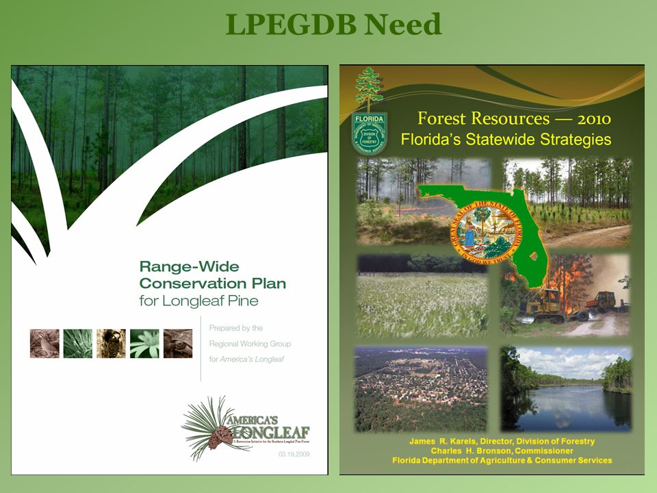Results: LPE Occurrence 4.8 million acres – LPE still unknown Mostly pine plantation Merits further assessment