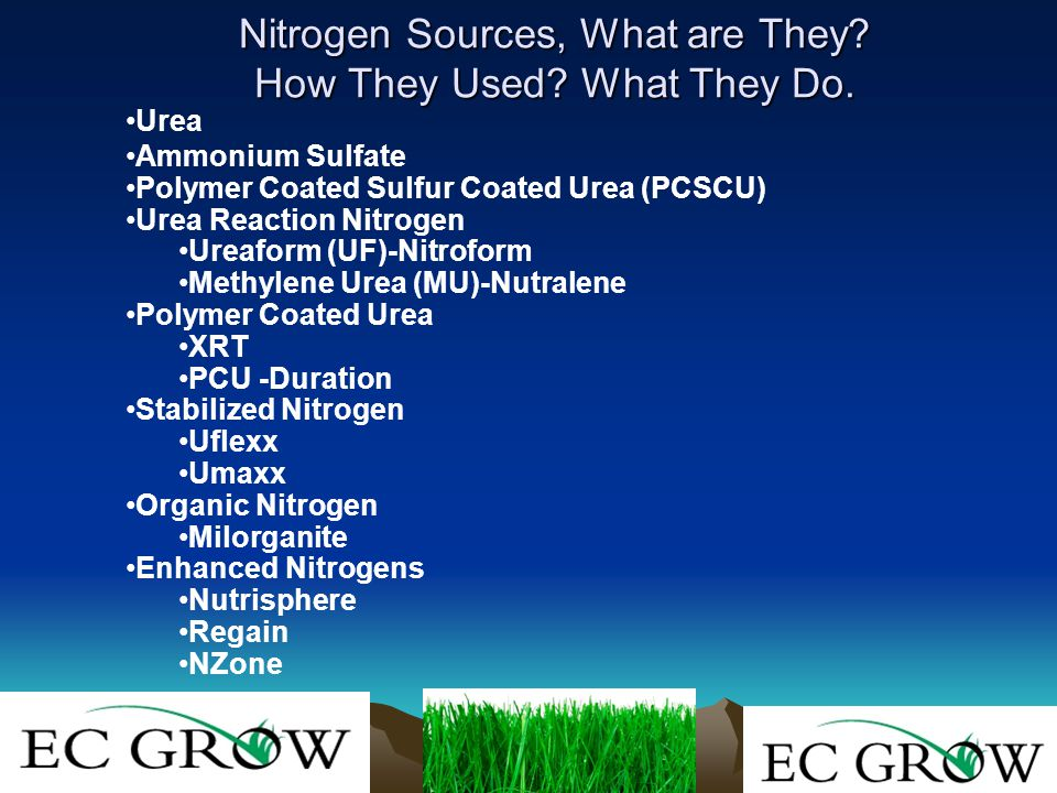 Nitrogen Sources, What are They. How They Used. What They Do.
