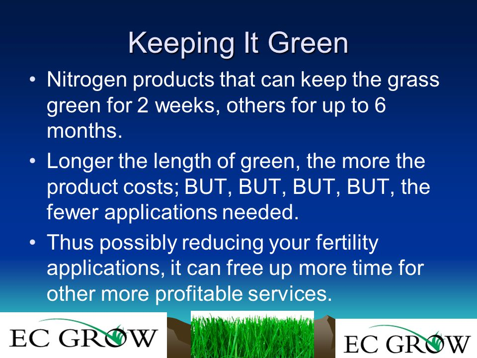 Keeping It Green Nitrogen products that can keep the grass green for 2 weeks, others for up to 6 months.