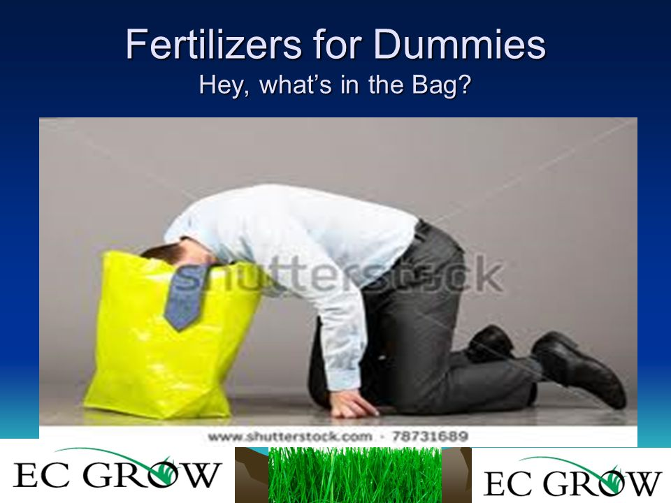 Fertilizers for Dummies Hey, what's in the Bag