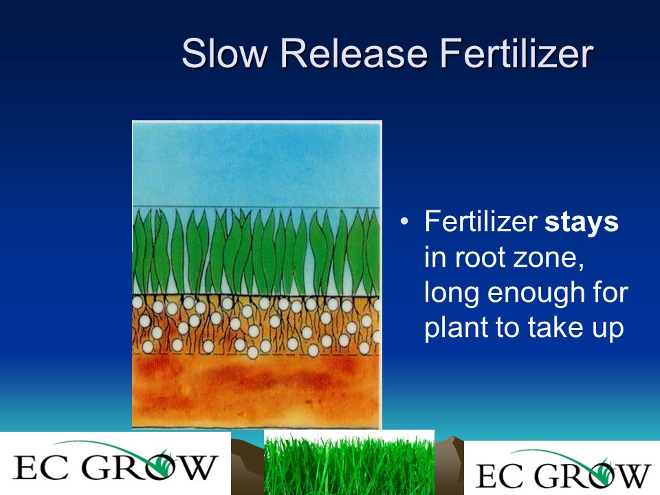 Slow Release Fertilizer Fertilizer stays in root zone, long enough for plant to take up