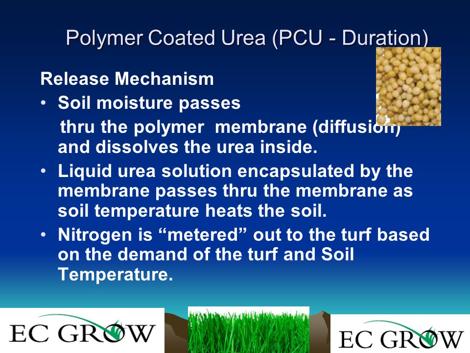 Release Mechanism Soil moisture passes thru the polymer membrane (diffusion) and dissolves the urea inside.