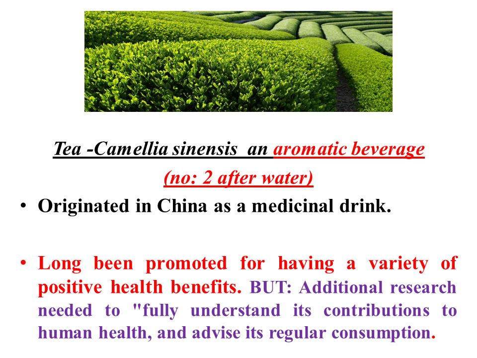 Tea -Camellia sinensis an aromatic beverage (no: 2 after water) Originated in China as a medicinal drink.