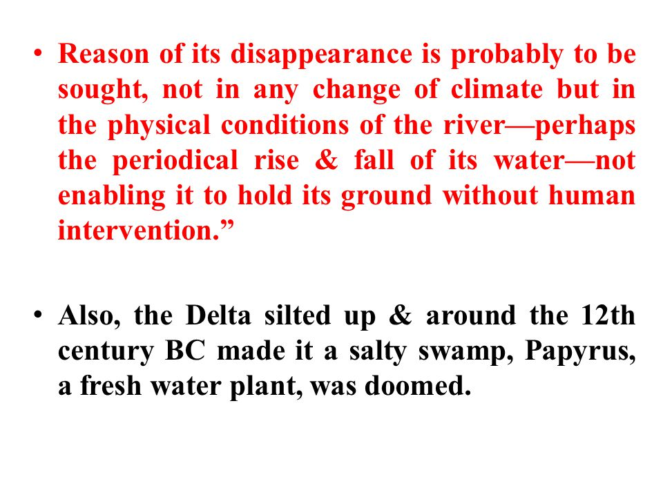 Reason of its disappearance is probably to be sought, not in any change of climate but in the physical conditions of the river—perhaps the periodical rise & fall of its water—not enabling it to hold its ground without human intervention. Also, the Delta silted up & around the 12th century BC made it a salty swamp, Papyrus, a fresh water plant, was doomed.