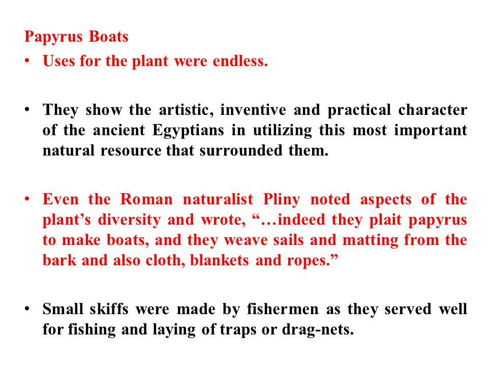 Papyrus Boats Uses for the plant were endless.