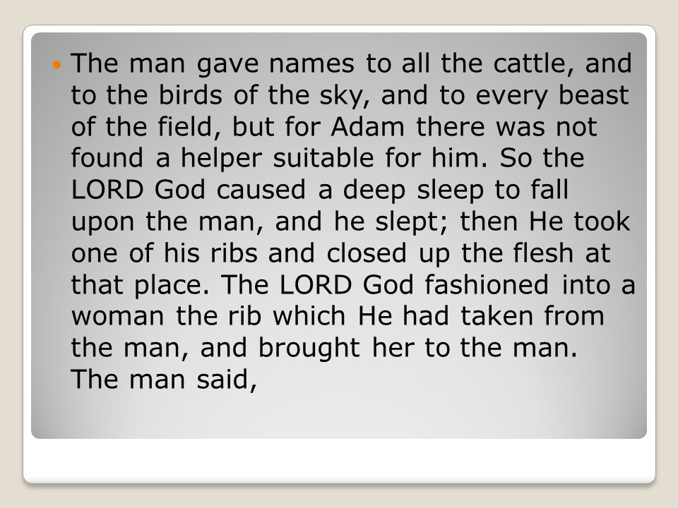 The man gave names to all the cattle, and to the birds of the sky, and to every beast of the field, but for Adam there was not found a helper suitable for him.