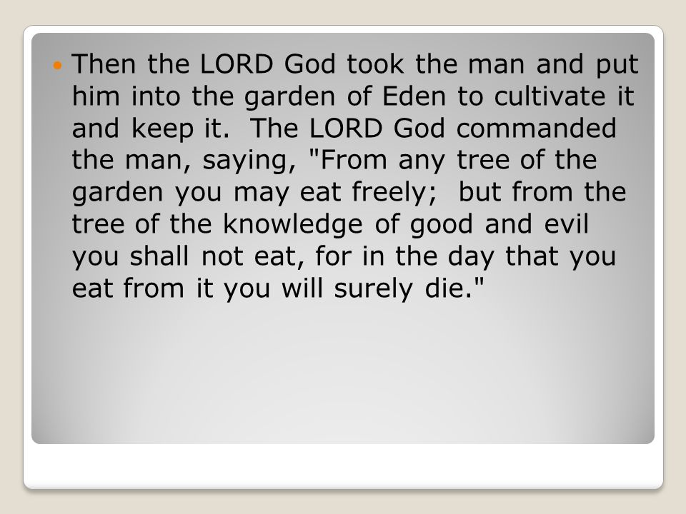 Then the LORD God took the man and put him into the garden of Eden to cultivate it and keep it.
