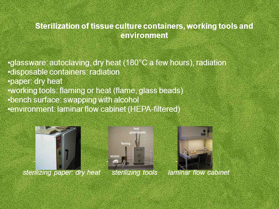 Sterilization of tissue culture containers, working tools and environment glassware: autoclaving, dry heat (180°C a few hours), radiation disposable containers: radiation paper: dry heat working tools: flaming or heat (flame, glass beads) bench surface: swapping with alcohol environment: laminar flow cabinet (HEPA-filtered) sterilizing paper: dry heat sterilizing tools laminar flow cabinet