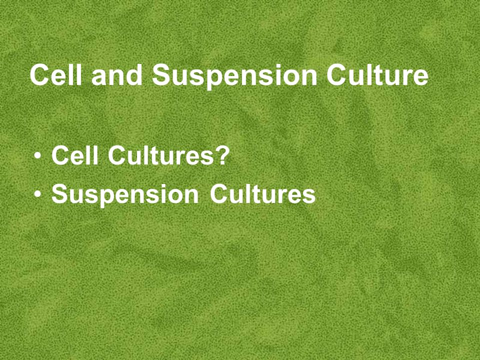 Cell and Suspension Culture Cell Cultures Suspension Cultures