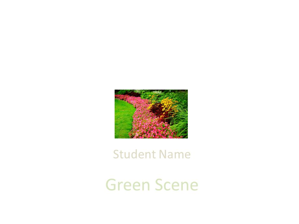 Green Scene Student Name