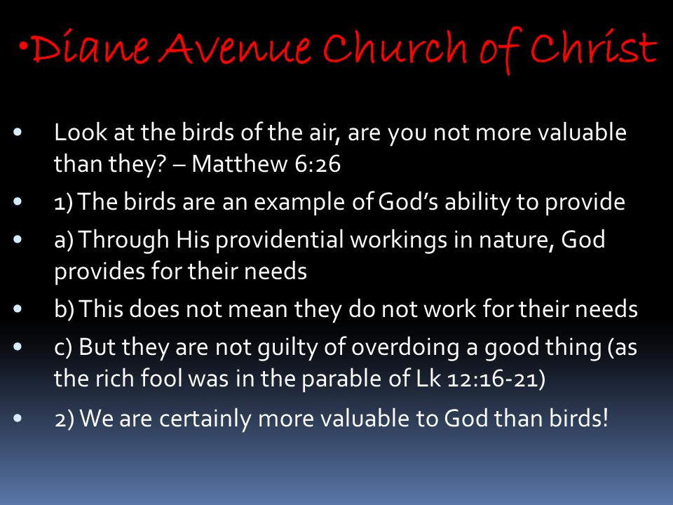 Diane Avenue Church of Christ Look at the birds of the air, are you not more valuable than they.
