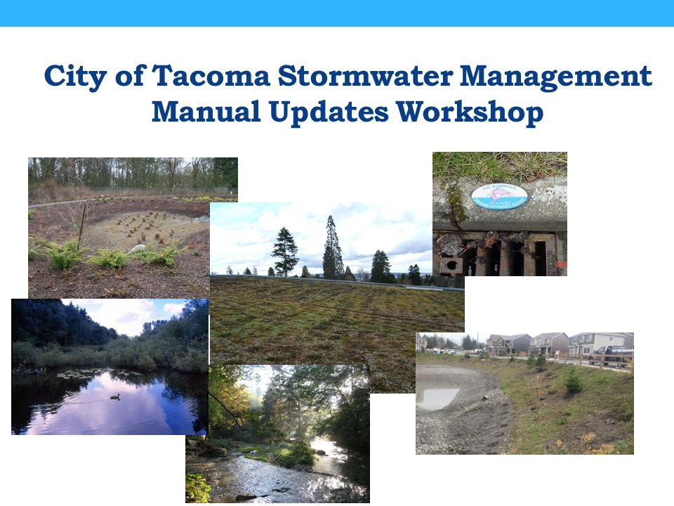 Minimum Requirement #8 – Wetlands Protection (Permit Compliance Revision) Discharges to wetlands shall maintain the hydrologic conditions, hydrophytic vegetation, and substrate characteristics necessary to support existing and designated uses.