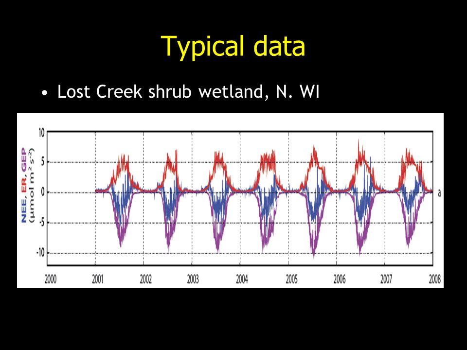 Typical data Lost Creek shrub wetland, N. WI