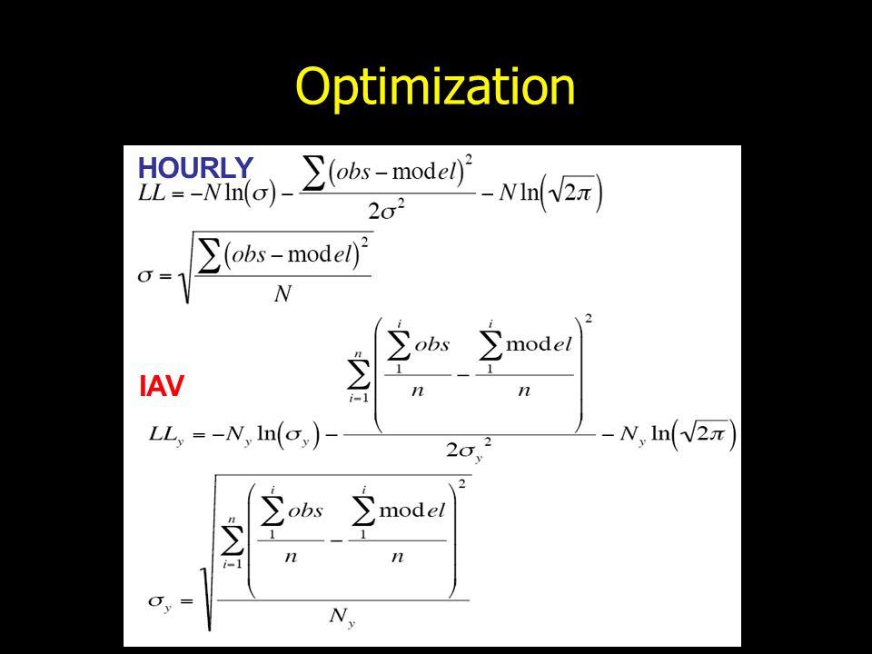 Optimization HOURLY IAV