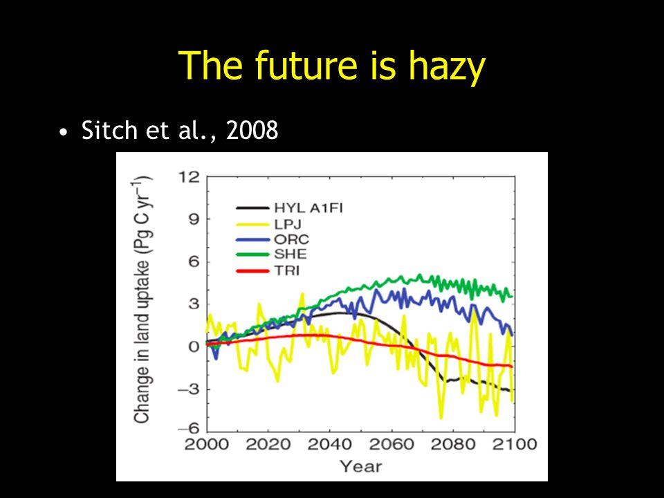 The future is hazy Sitch et al., 2008
