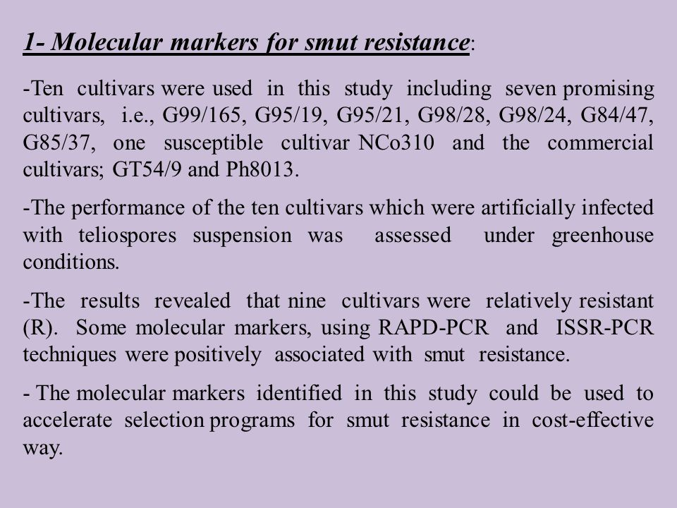 1- Molecular markers for smut resistance : -Ten cultivars were used in this study including seven promising cultivars, i.e., G99/165, G95/19, G95/21, G98/28, G98/24, G84/47, G85/37, one susceptible cultivar NCo310 and the commercial cultivars; GT54/9 and Ph8013.