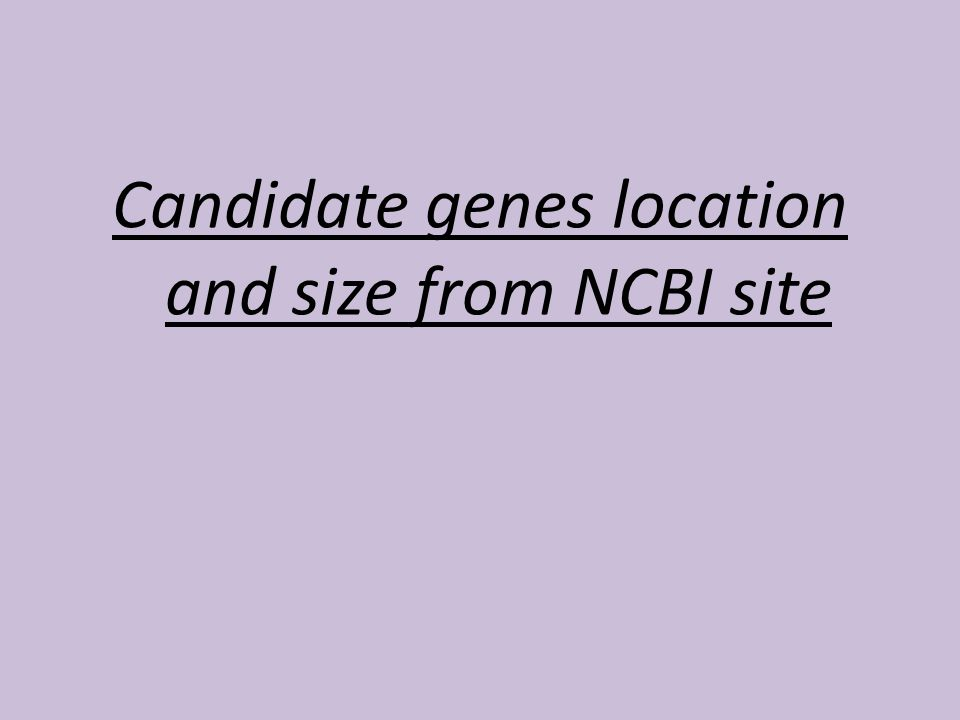 Candidate genes location and size from NCBI site
