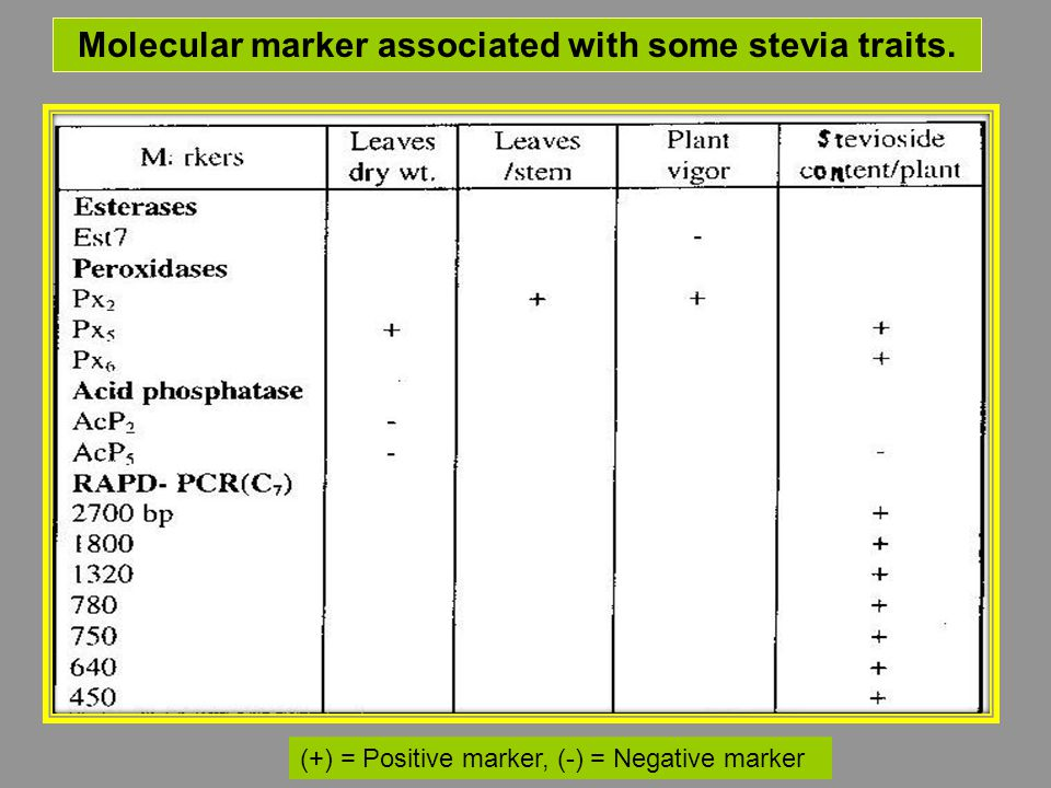 Molecular marker associated with some stevia traits. (+) = Positive marker, (-) = Negative marker