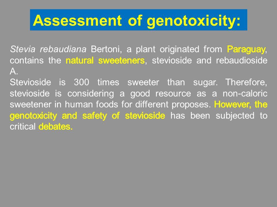 Assessment of genotoxicity: