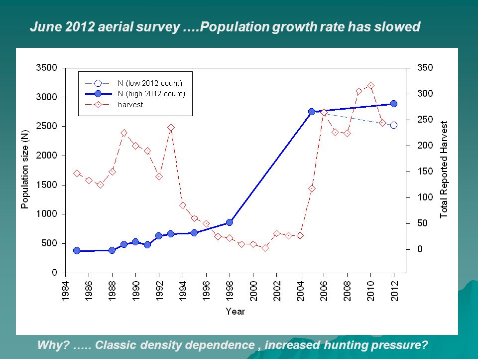 June 2012 aerial survey ….Population growth rate has slowed Why? ….. Classic density dependence, increased hunting pressure?