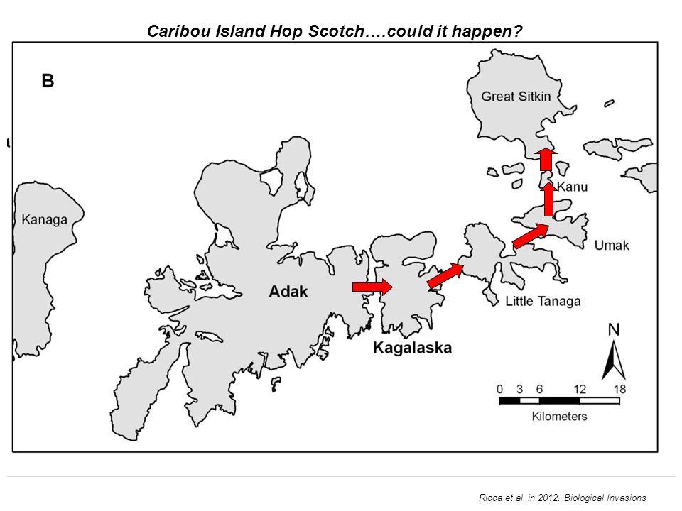 Caribou Island Hop Scotch….could it happen Ricca et al. in 2012. Biological Invasions