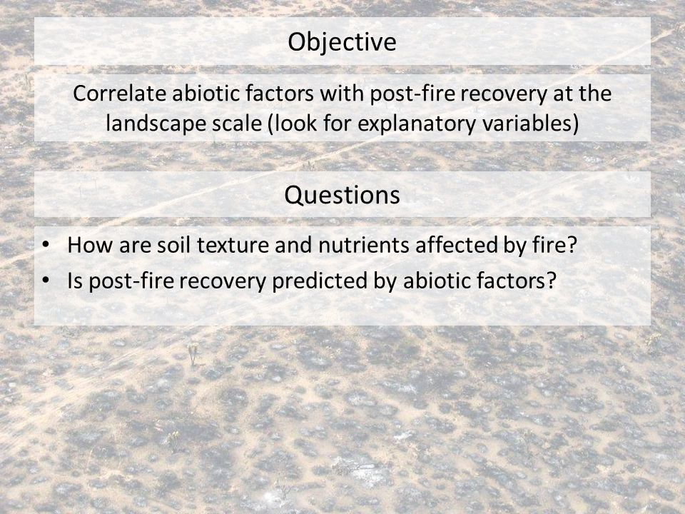 Objective Questions How are soil texture and nutrients affected by fire? Is post-fire recovery predicted by abiotic factors? Correlate abiotic factors
