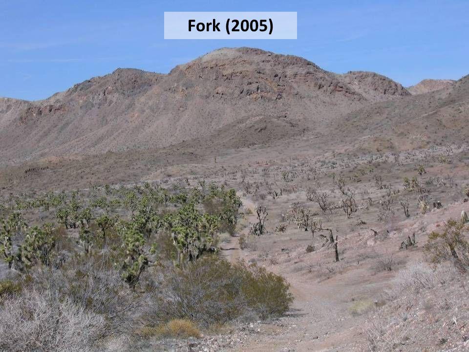 Fork (2005)