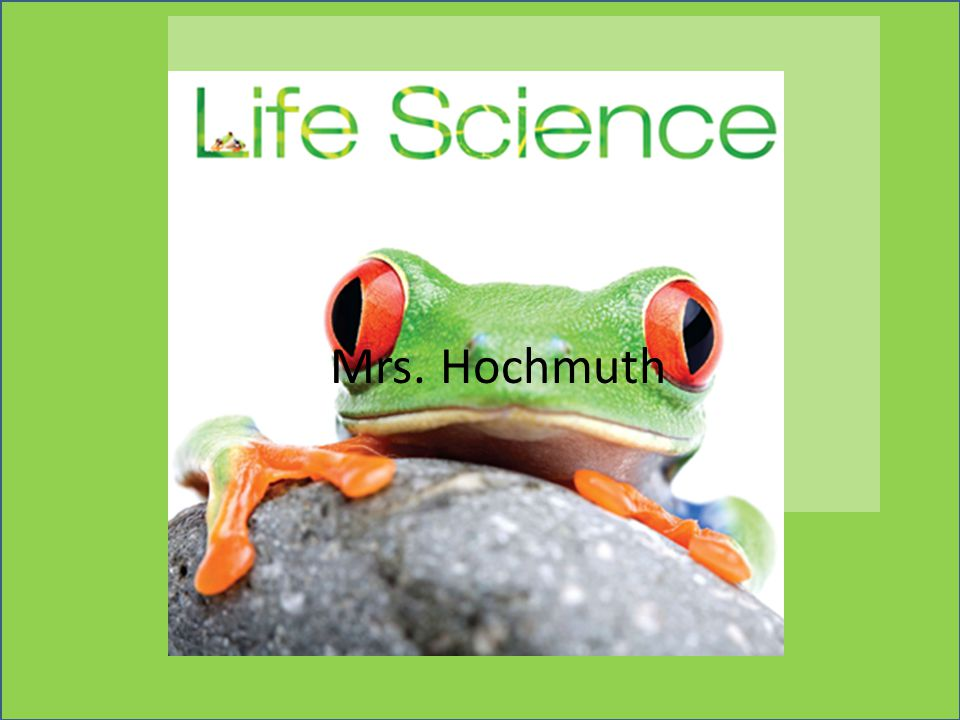 Science Journal #8 Exploring Life 1.How did microscopes change out ideas about living things.