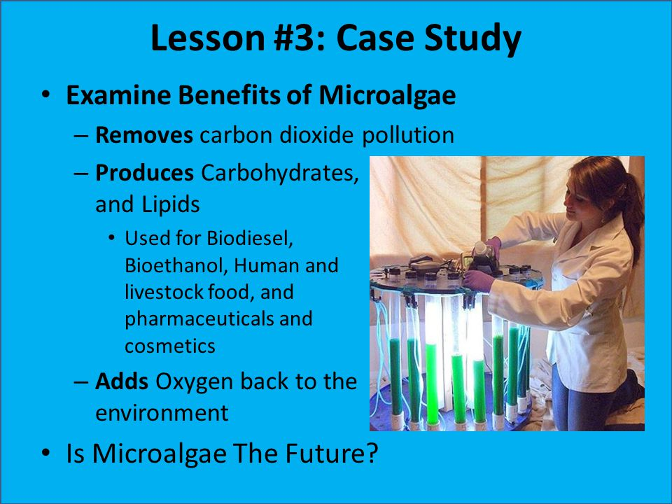 Lesson #3: Case Study Examine Benefits of Microalgae – Removes carbon dioxide pollution – Produces Carbohydrates, and Lipids Used for Biodiesel, Bioet