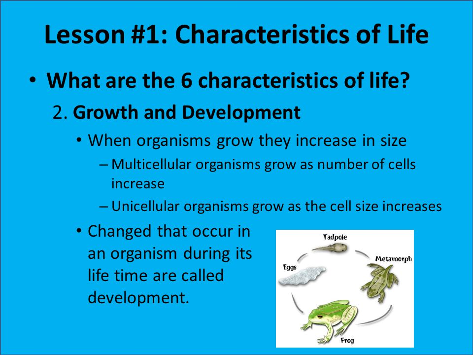 Lesson #1: Characteristics of Life What are the 6 characteristics of life? 2. Growth and Development When organisms grow they increase in size – Multi
