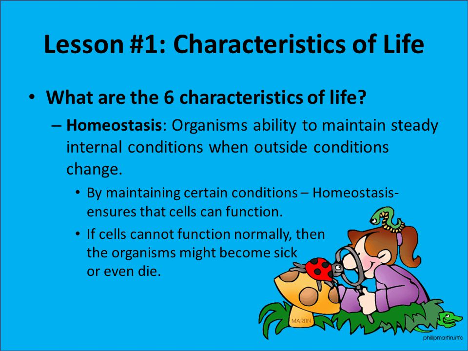 Lesson #1: Characteristics of Life What are the 6 characteristics of life? – Homeostasis: Organisms ability to maintain steady internal conditions whe