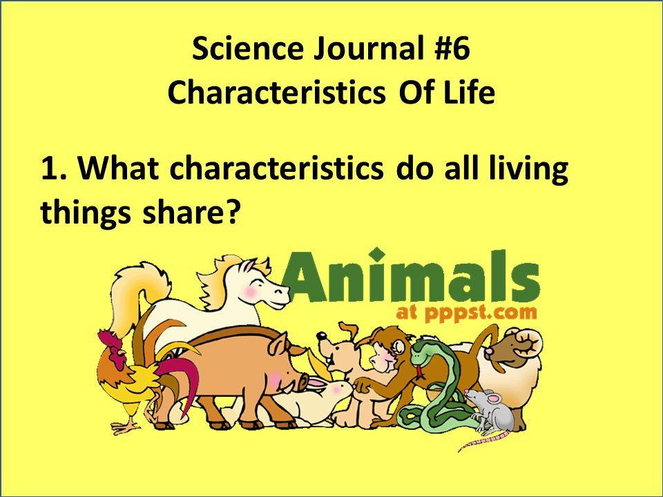 Science Journal #6 Characteristics Of Life 1. What characteristics do all living things share?