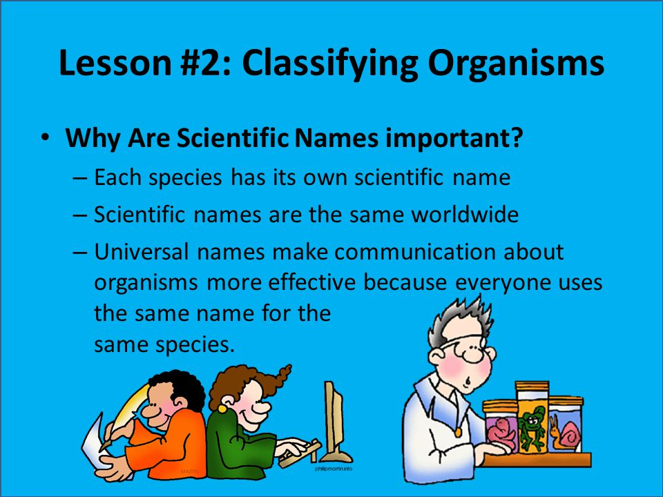Lesson #2: Classifying Organisms Why Are Scientific Names important? – Each species has its own scientific name – Scientific names are the same worldw