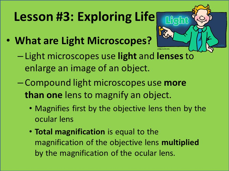 Lesson #3: Exploring Life What are Light Microscopes? – Light microscopes use light and lenses to enlarge an image of an object. – Compound light micr