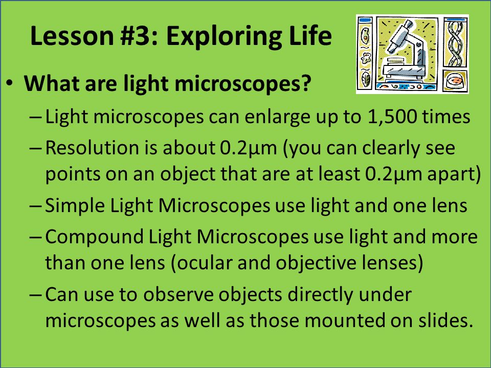 Lesson #3: Exploring Life What are light microscopes? – Light microscopes can enlarge up to 1,500 times – Resolution is about 0.2µm (you can clearly s