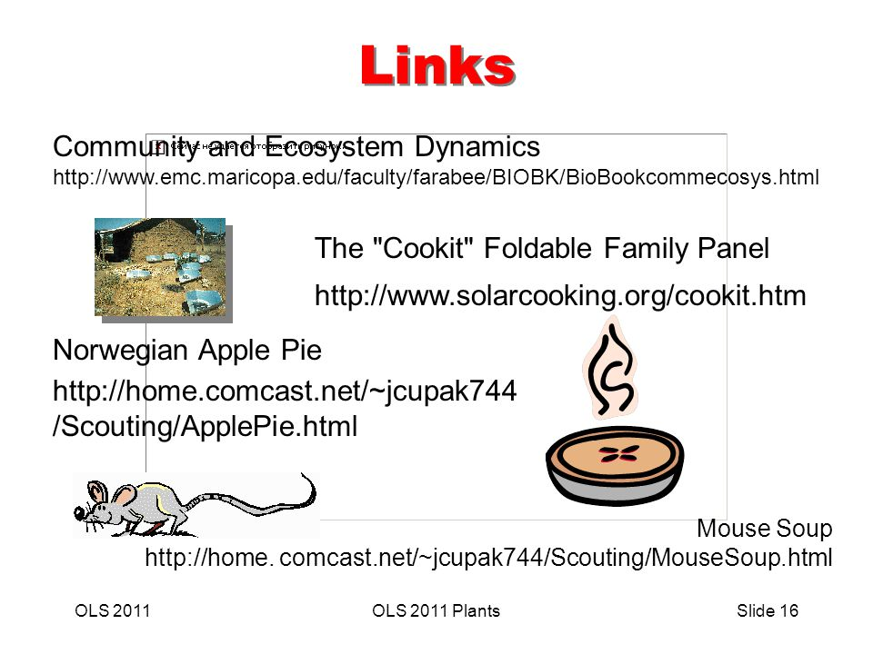 OLS 2011OLS 2011 PlantsSlide 16 Links The Cookit Foldable Family Panel http://www.solarcooking.org/cookit.htm Norwegian Apple Pie http://home.comcast.net/~jcupak744 /Scouting/ApplePie.html Mouse Soup http://home.