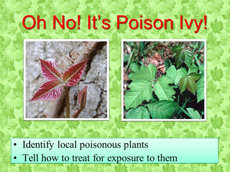 OLS 2011OLS 2011 PlantsSlide 5 Oh No. It's Poison Ivy.