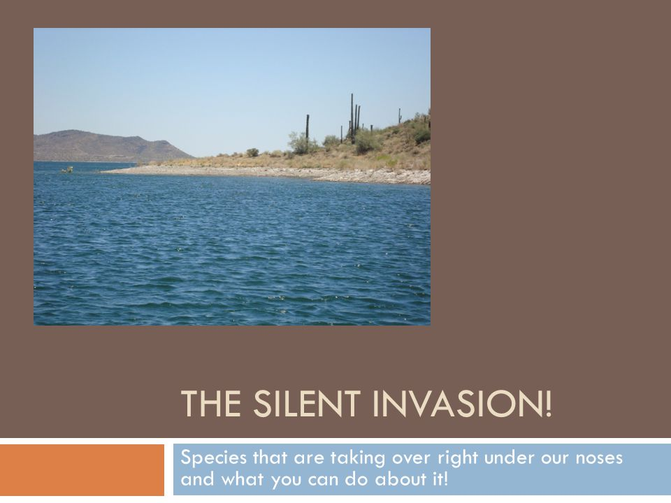 THE SILENT INVASION.