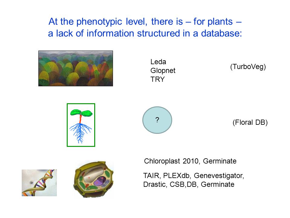 At the phenotypic level, there is – for plants – a lack of information structured in a database: TAIR, PLEXdb, Genevestigator, Drastic, CSB,DB, Germin