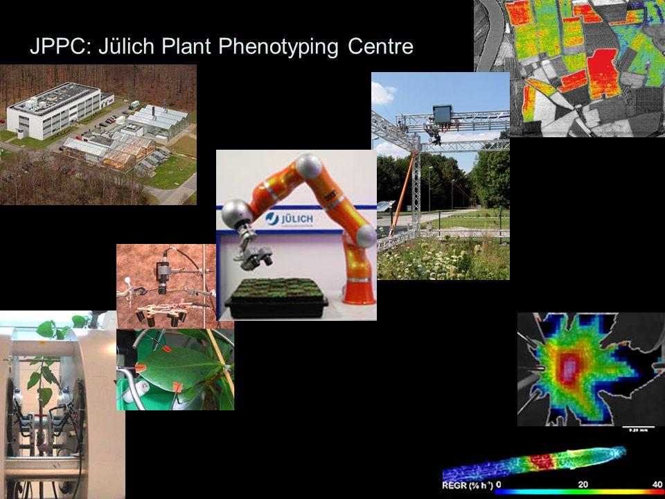 - Yield - RGR, ULR, LAR - SLA - LMF, SMF, RMF, (HI) Growth box (> 4) - PHOT actual - PHOT capacity (/m2, /g, /N) - gs,Transpiration, - c i /c a - J / V max - RESP leaf, stem, root, fruit (/g) Gas exchange (> 3) - [C], [N], [P] leaf, stem, root, fruit - Starch, Fructan - Nitrate - Sol.