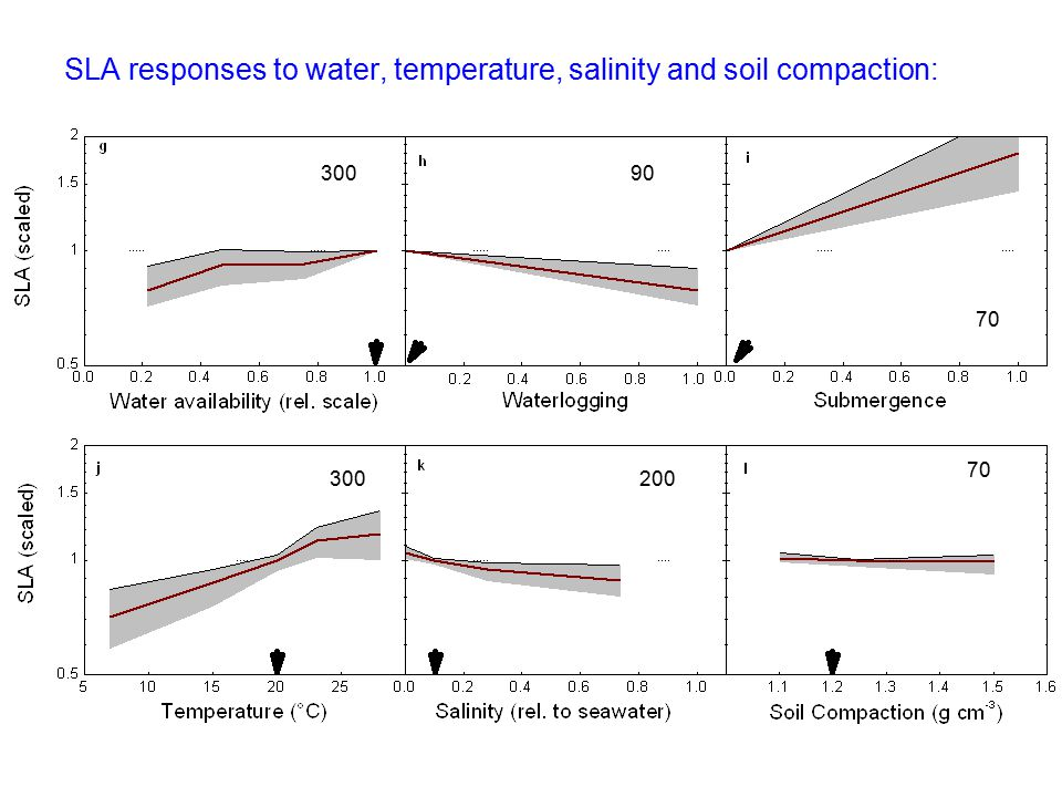 SLA responses to water, temperature, salinity and soil compaction: 30090 70 300200 70