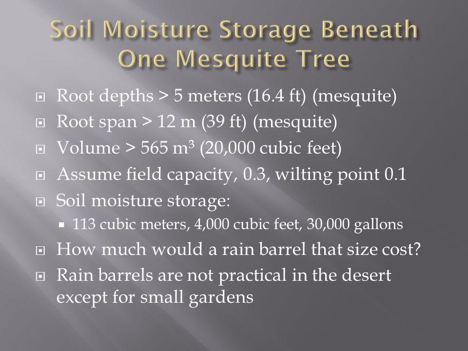  Root depths > 5 meters (16.4 ft) (mesquite)  Root span > 12 m (39 ft) (mesquite)  Volume > 565 m 3 (20,000 cubic feet)  Assume field capacity, 0.