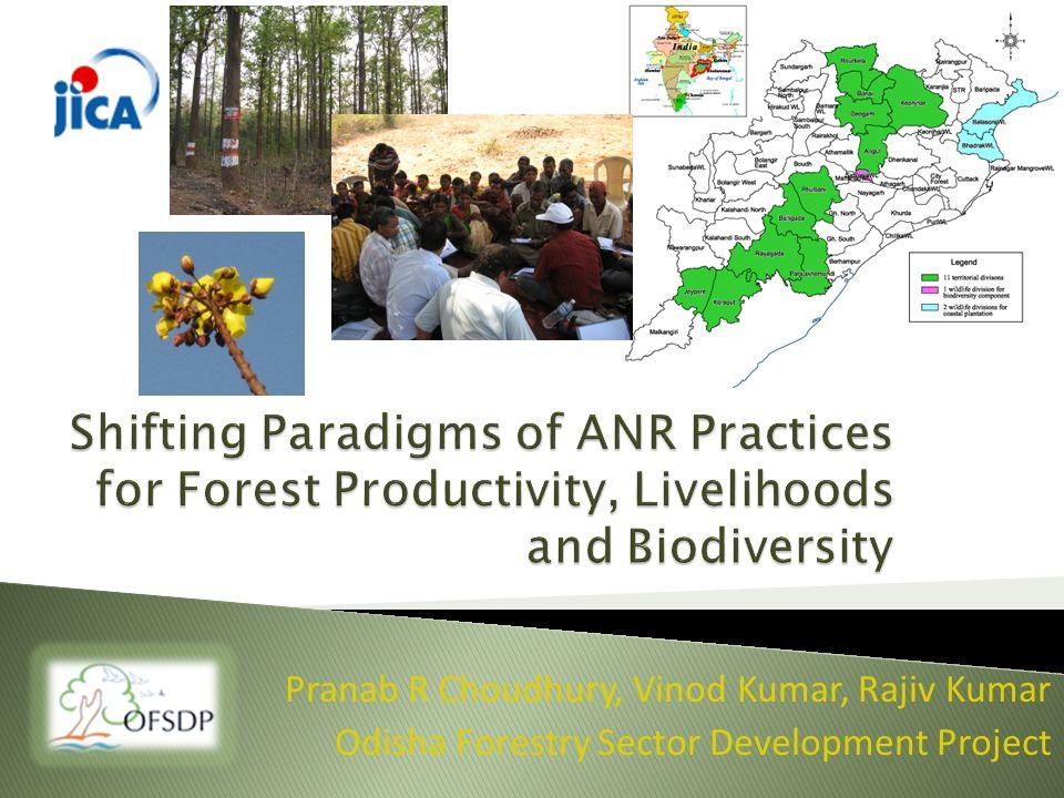 Pranab R Choudhury, Vinod Kumar, Rajiv Kumar Odisha Forestry Sector Development Project