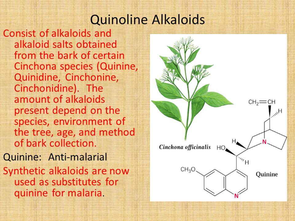 Quinoline Alkaloids Consist of alkaloids and alkaloid salts obtained from the bark of certain Cinchona species (Quinine, Quinidine, Cinchonine, Cincho