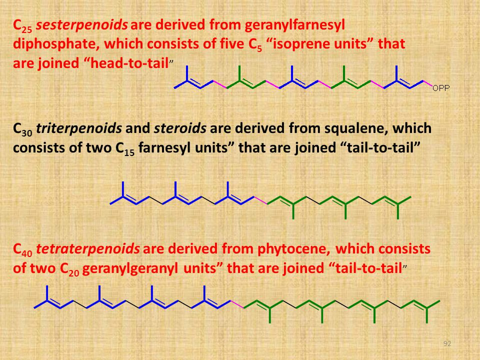 """92 C 25 sesterpenoids are derived from geranylfarnesyl diphosphate, which consists of five C 5 """"isoprene units"""" that are joined """"head-to-tail """" C 30 t"""