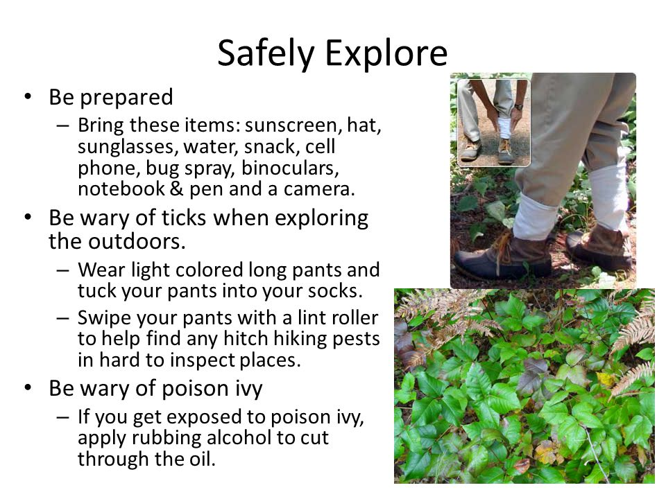Safely Explore Be prepared – Bring these items: sunscreen, hat, sunglasses, water, snack, cell phone, bug spray, binoculars, notebook & pen and a came