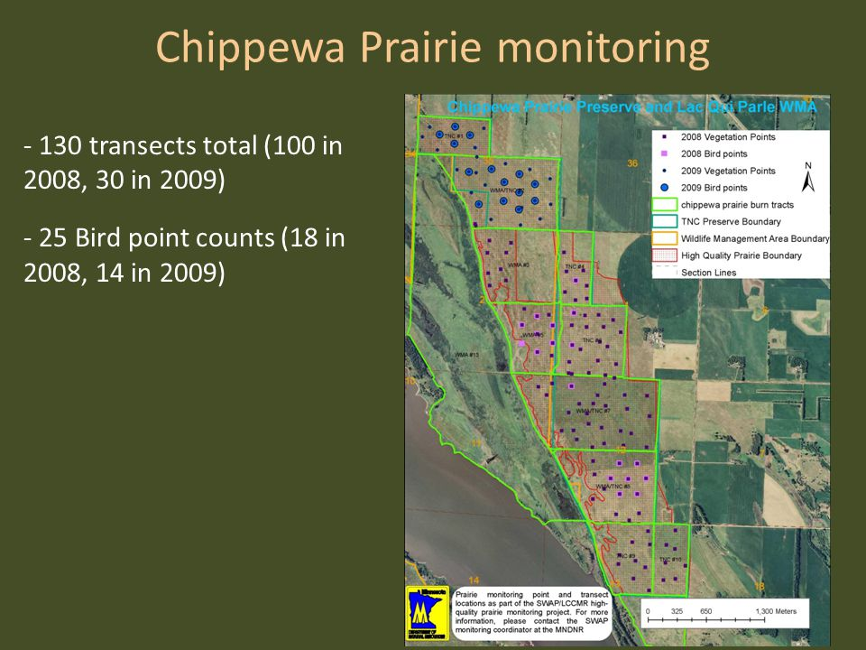 Chippewa Prairie monitoring - 130 transects total (100 in 2008, 30 in 2009) - 25 Bird point counts (18 in 2008, 14 in 2009)