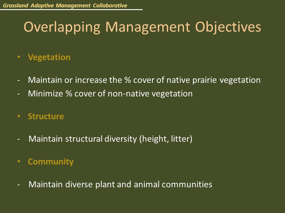 Overlapping Management Objectives Vegetation -Maintain or increase the % cover of native prairie vegetation -Minimize % cover of non-native vegetation Structure - Maintain structural diversity (height, litter) Community - Maintain diverse plant and animal communities Grassland Adaptive Management Collaborative