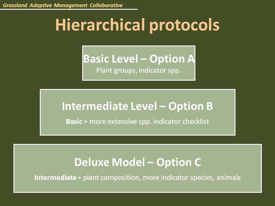 Hierarchical protocols Basic Level – Option A Plant groups, indicator spp.